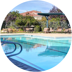 featured_image_pool_side