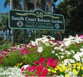 🌹 Botanical Gardens & Redondo Beach Pier Excursion